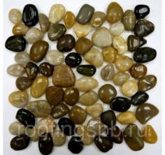 Мозаика каменная Bonaparte (Бонапарт) Mix Jack 30,5x30,5. Бежевый