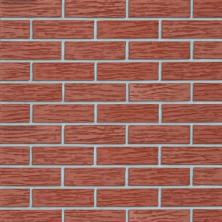 Плитка Roben, клинкерная,MELBOURNE Ziegelrot Genarbt , 240х14х71 мм