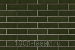Клинкерная фасадная плитка King Klinker Польша Глазурованная клинкерная плитка для фасада Green hills (25) Зеленый холм