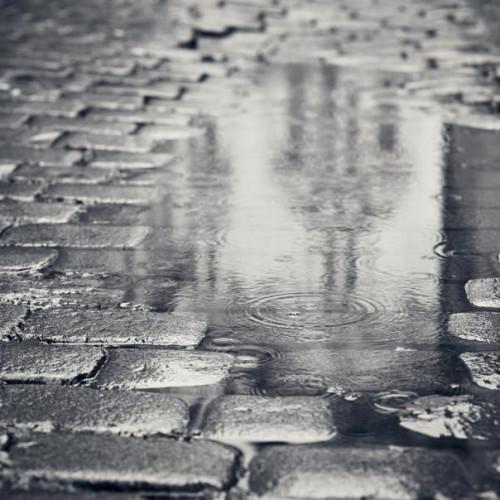 В США разработали пористую брусчатку, которая поглощает воду и предотвращает потопы.
